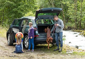 Nuevo Škoda Kodiaq 1.5 TSI 125 Aniversario 4x2 DSG 110kW