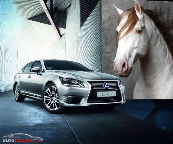 Lexus patrocinará la exposición Pure Blood Reflections