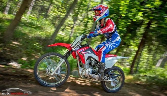 Honda desvela la nueva CRF125FB 2014