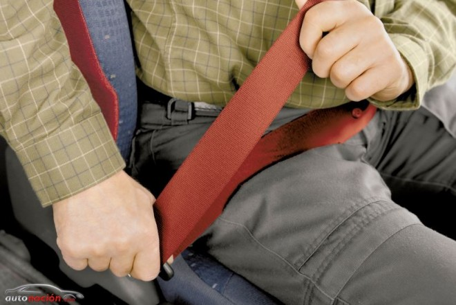 Solo el 50% de camioneros usan el cinturón