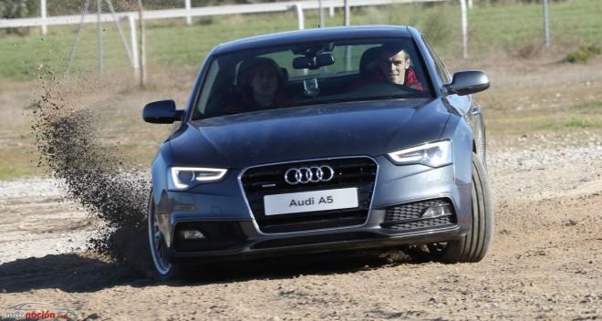Jugadores y técnicos del Real Madrid reciben sus nuevos Audi