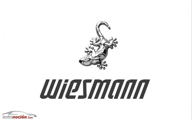Wiesmann podría reaparecer si resuelve sus problemas económicos