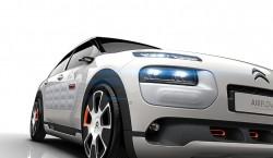 concept C4 Cactus Airflow 2L