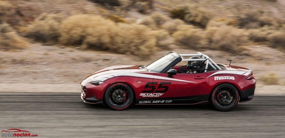 El Mazda MX-5 CUP es un modelo de competición global y ya tiene precio