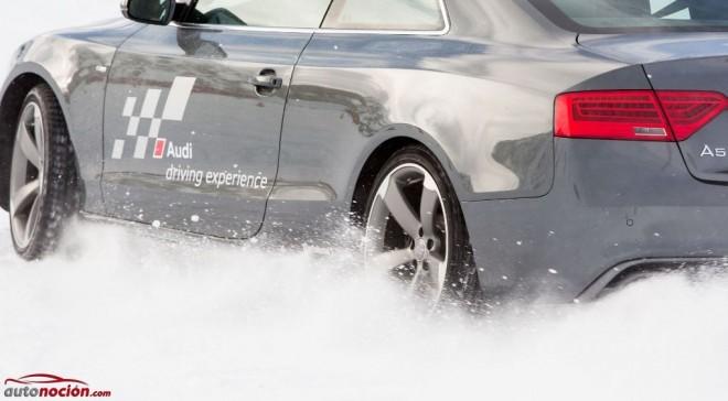 Experiencia quattro® en nieve y hielo: Todo lo que tienes que saber sobre la tracción integral de los cuatro aros