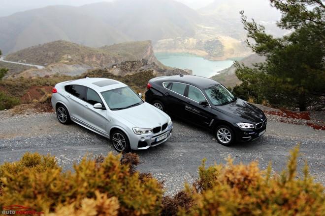 Comparativa: BMW X4 vs. BMW X6 ¿Cuál de los dos hermanos es el favorito?