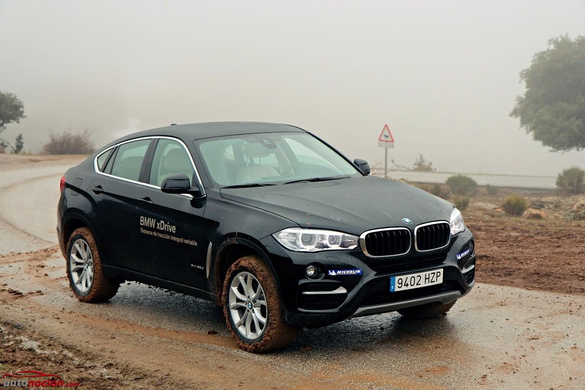 BMW X4-BMW X6 (53)
