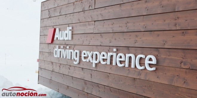 driving experience audi