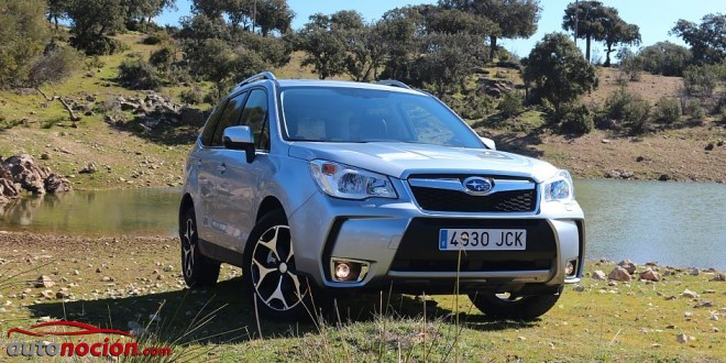 forester diésel lineartronic