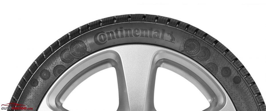 ¿Caucho de diente de león en un neumático?: Continental busca revolucionar la industria del caucho