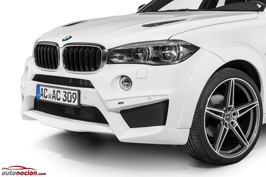 BMW X6 Falcon por AC Schnitzer (7)
