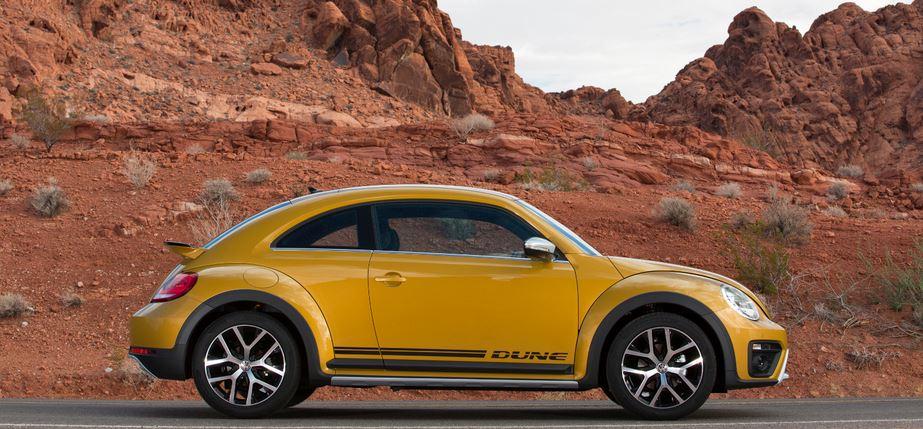 Beetle Dune 1