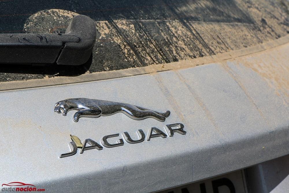 Jaguar F-Pace (6)