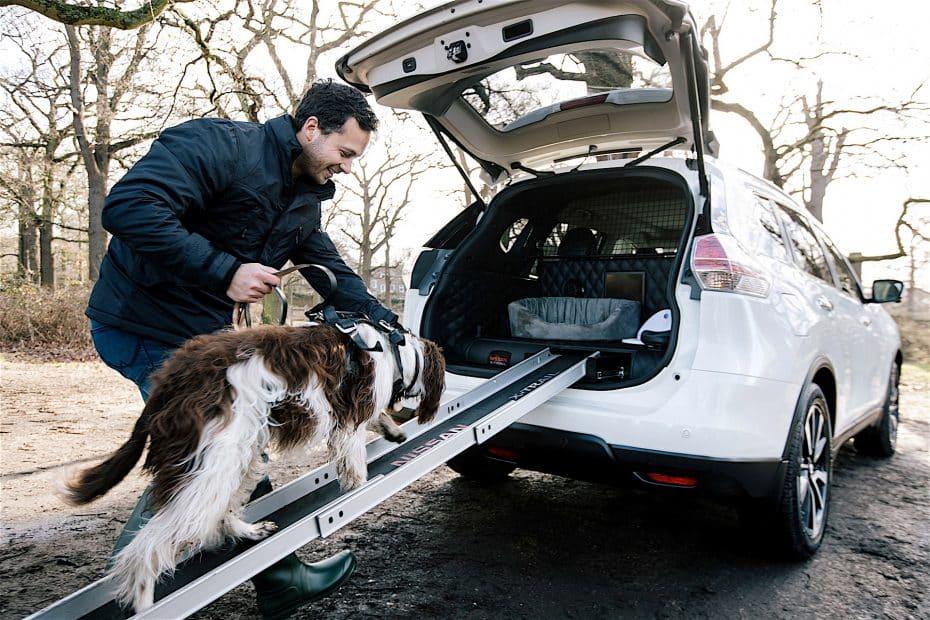 ¿Un coche para perros? No, en Nissan no se han vuelto locos, solo los consideran uno más de la familia