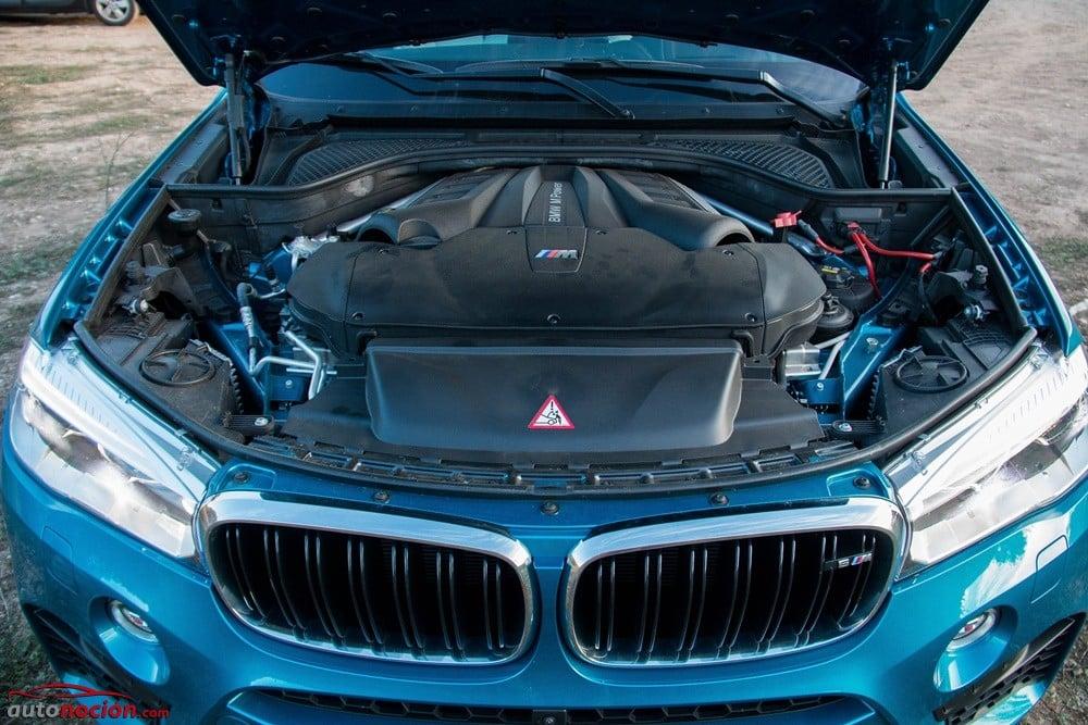 BMW X6M (76)