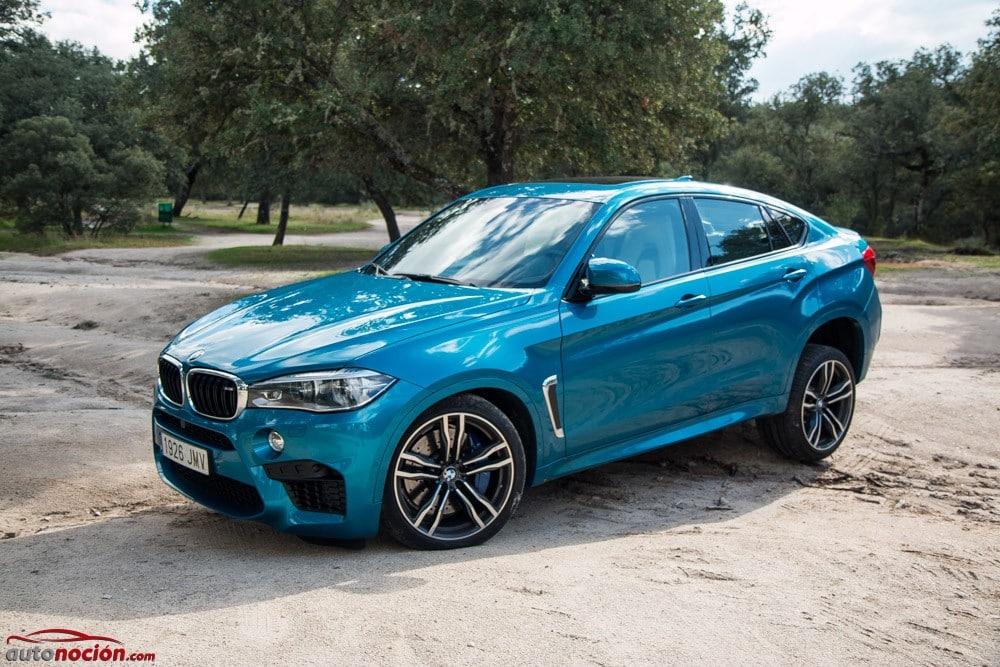 BMW X6M (78)