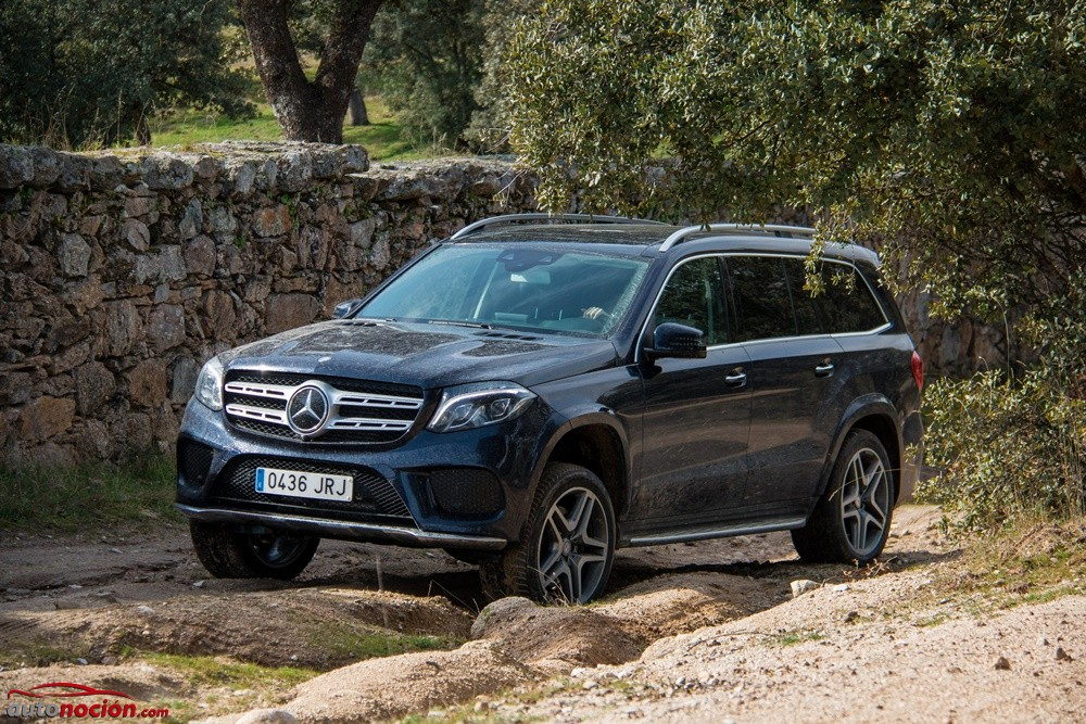 Mercedes-Benz GLS 350d (15)