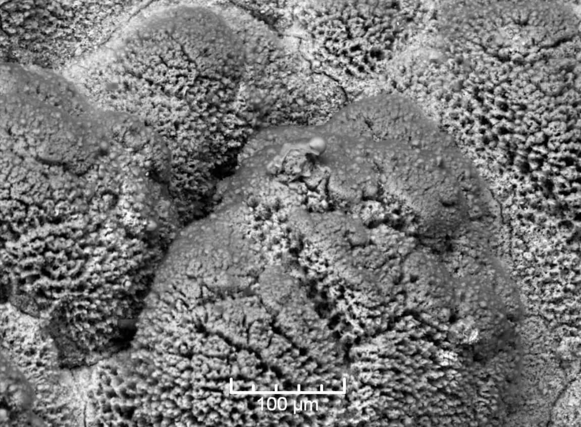 Impurezas del aceite de motor al microscopio