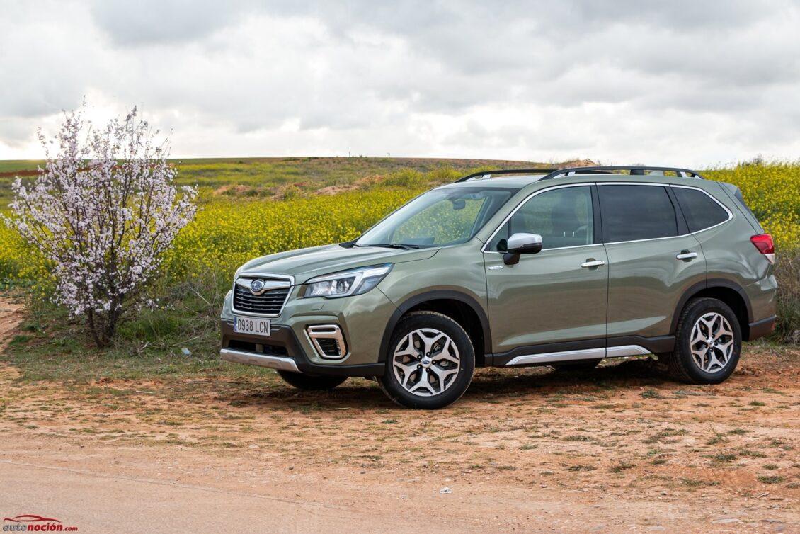 Prueba Subaru Forester 2.0i Eco Hybrid CVT Executive 2020: El rey de la polivalencia y la habitabilidad